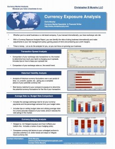 Currency risk analysis jpeg final OPT 200K